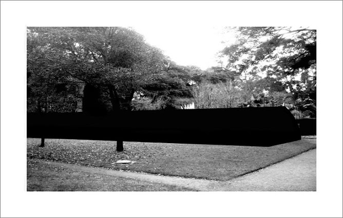 Jardin Botanico 6.45am
