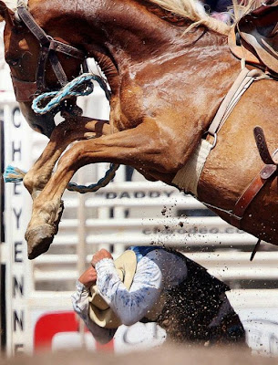 Most Dangerous Moment of Rodeo Seen On www.coolpicturegallery.us