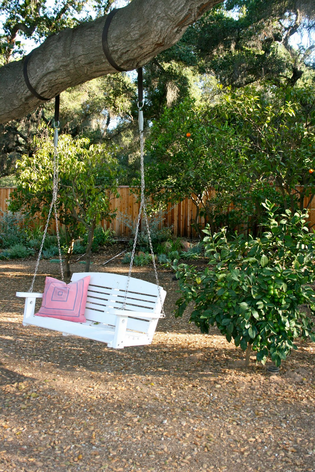 The Polished Pebble Garden Update Sunday Morning Walk