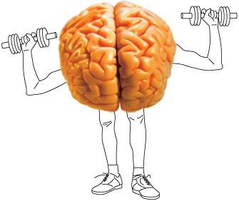 Improve memory vitamin image 2