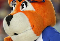 A close up view of the stuffed animal looking Memphis Tiger mascot head.