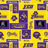 Checkered ECU desktop wallpaper with yellow and purple pirate and football helmet designs.