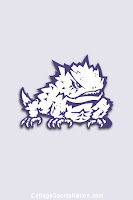 Horned Frog on gray background.