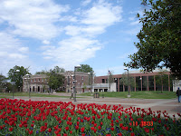 A red rose garden foreground with brick classroom building under a blue sky on the University of Memphis.