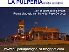En la patagonia norte argentina