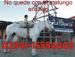 AGENDELO 02941 15584003