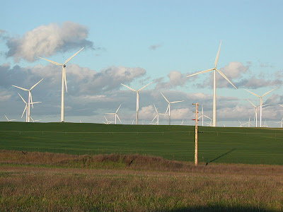 wind farm, wind power, wind energy, wind, renewable energy
