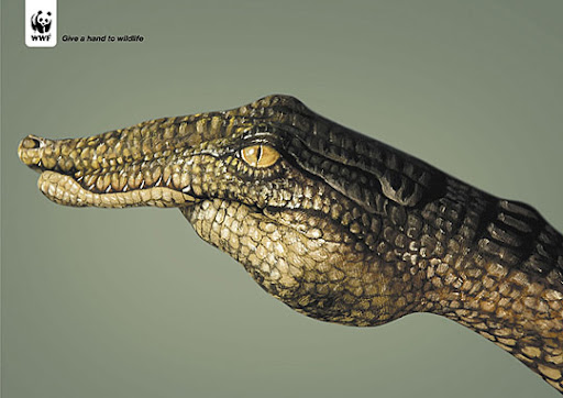 Give A Hand To Wildlife Crocodile l 27 Alarming Advertisements Dedicated to Earth Day | Part  2