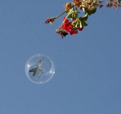 bubbles+cheth+%285%29 crazy bubbles
