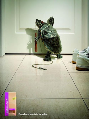 eukanuba Astonishing Animal Advertisements Creating Awareness