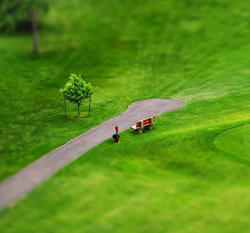 The+Bench,+She%27sa+Tilted 50+ Beautiful Examples of Tilt Shift Photography