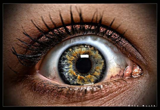 Eye HDR 2 by ridethespiral1 30+ Mesmerising Macro Photos of the Human Eye | Photography Inspiration