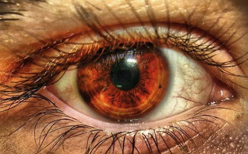 my eye HDR by P11K 30+ Mesmerising Macro Photos of the Human Eye | Photography Inspiration