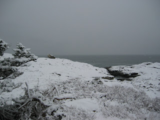 snow at white point