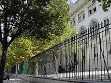 Petição contra abate de árvores do Liceu Camões