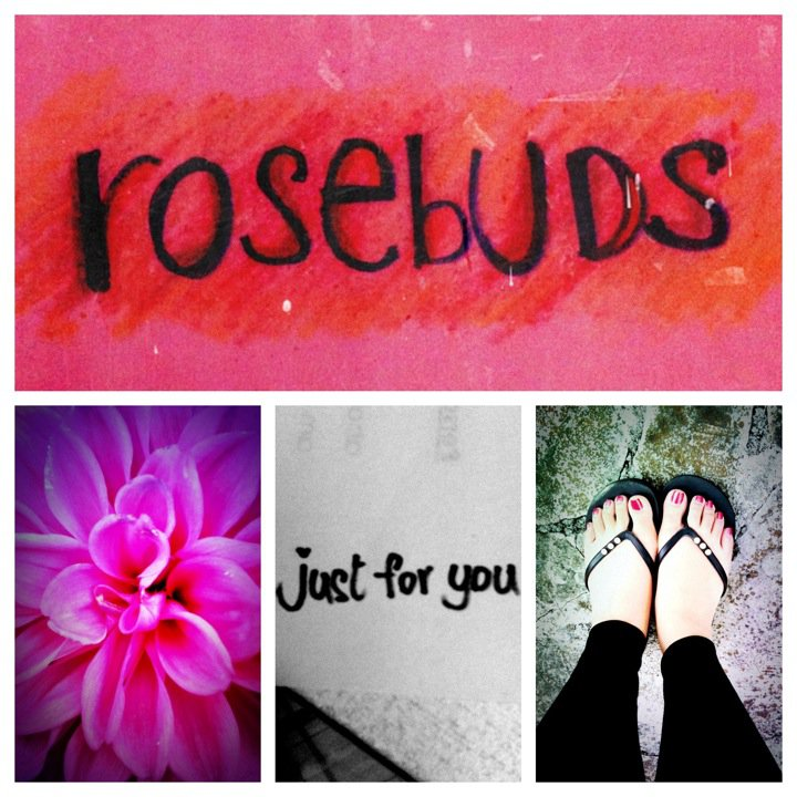 Rosebuds - Just For You