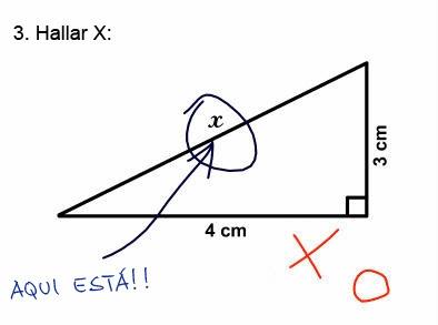 [ H u m o r] ; Examen de Universidad Examenes_estupidos_2