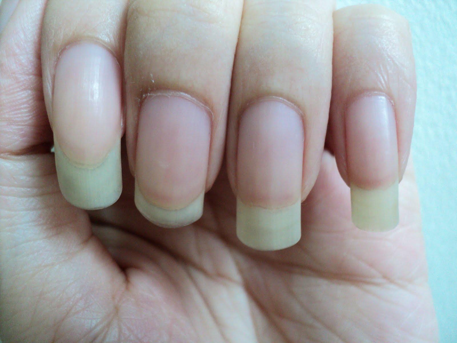 Isabel Lee | Malaysian Beauty & Lifestyle Blogger: Elianto Cuticle Oil
