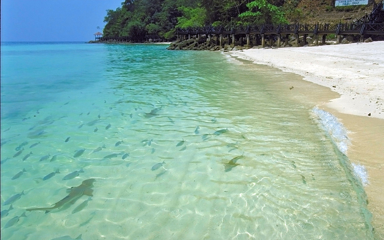 holiday at langkawi island Holidays in langkawi - find complete list of langkawi tour and travel packages with available deals book langkawi holiday packages online with yatracom and explore.