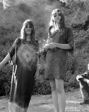 si c'est: Haute Hippies
