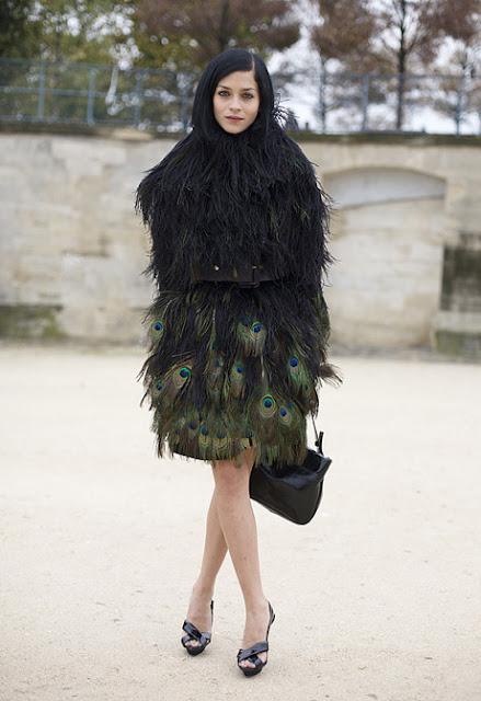 leigh lezark peacock feathers