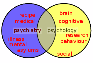 Psychiatrist and psychologist.?