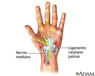 Los dolores bajo la espátula derecha por parte de la espalda a la tos