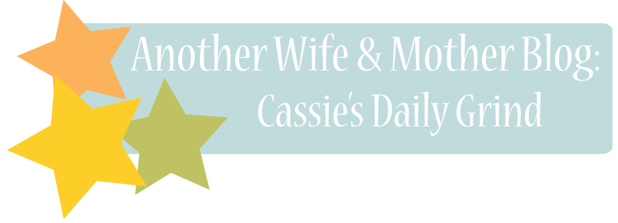 Another Wife & Mother Blog: Cassie's Daily Grind