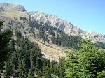 Άμεση ίδρυση Φυσικού Πάρκου: Βαρδουσίων- Σαράνταινας- Κραβάρων.