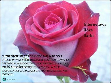 """""""Różaniec jest najpotężniejszą bronią,jaką możemy się bronić""""- s.Łucja z Fatimy"""
