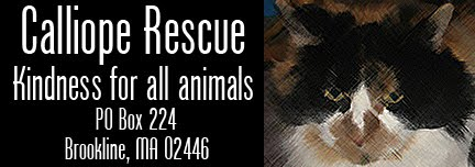 Calliope Rescue, Inc