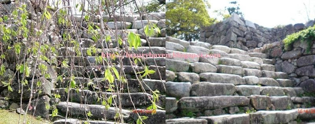fukuoka castle ruins nature