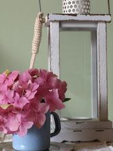 Adoro las hortensias!