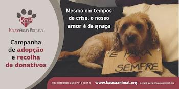 MESMO EM TEMPO DE CRISE, O NOSSO AMOR É DE GRAÇA!!