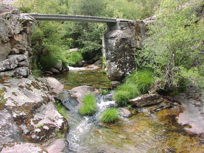 A nosa ponte