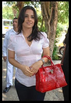 Vidya Balan Hot Photo