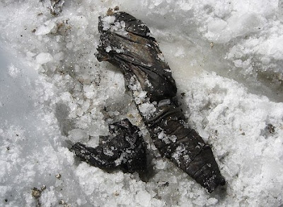 World war I soldier frozen into snow found