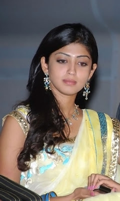 Praneetha looking cute in saree photo
