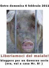liberiamoci del maiale!
