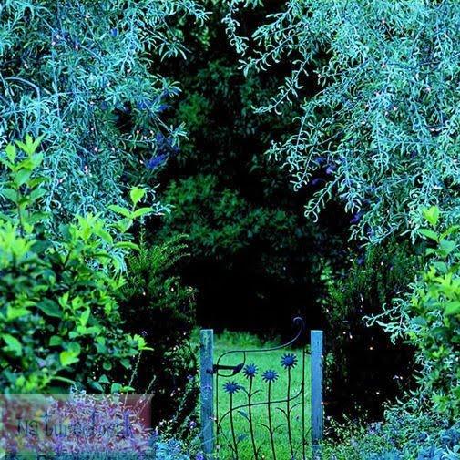 [The+Villa+gardens_8.jpg]