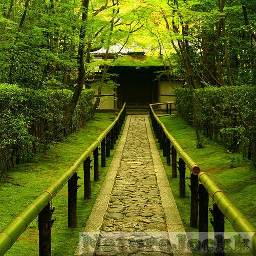 [Landscapes_1_Japanese+tea+house.jpg]