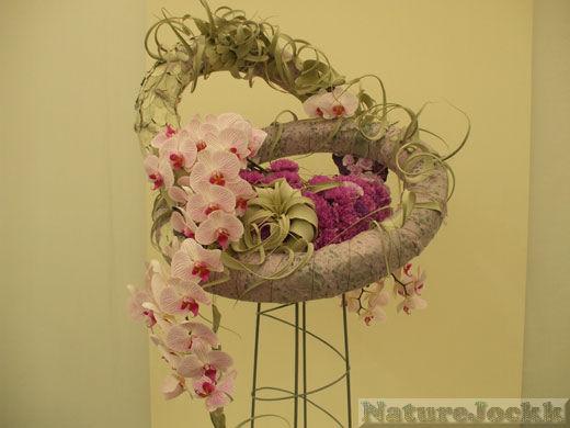 http://2.bp.blogspot.com/_6ANko4sjweM/SxPppqj2WtI/AAAAAAAAXJY/F0Sa6vhDw4Q/s1600/Chelsea+arrangement.jpg