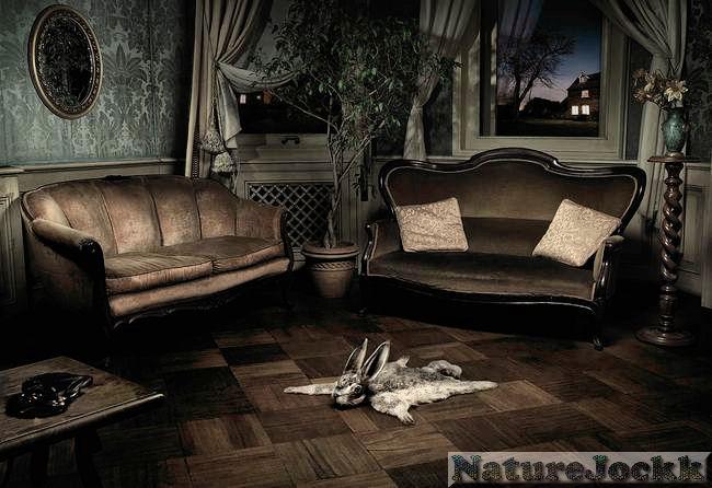 [Avant+Garde_2_rabbit+rug.jpg]