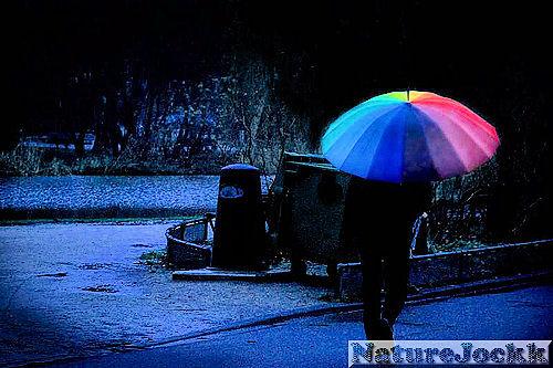 [Gay+Umbrella.jpg]