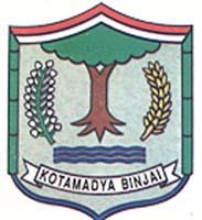 Info CPNS Kota Binjai 2013