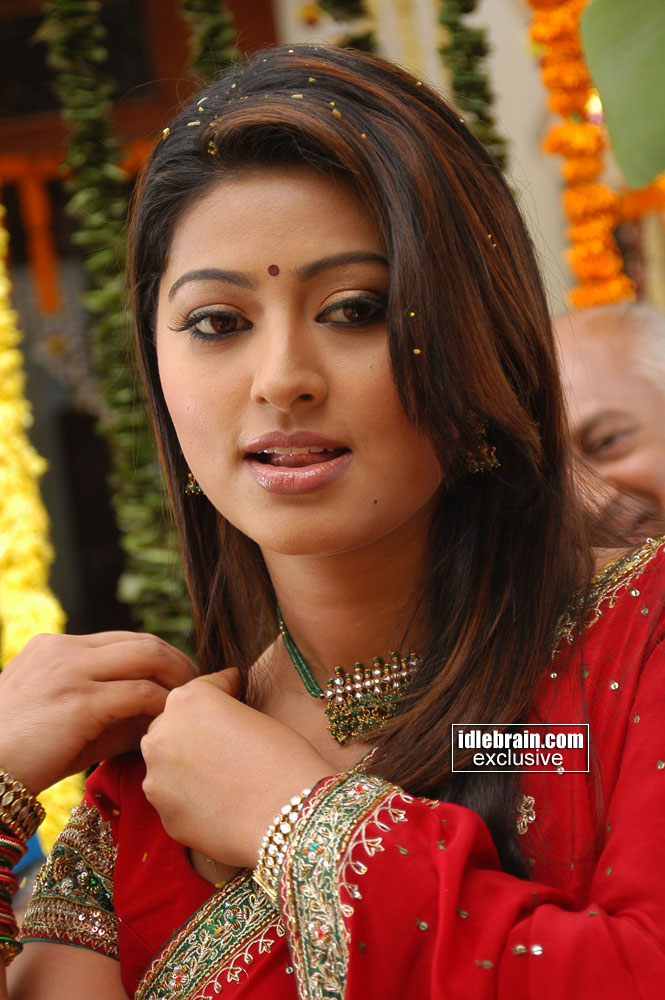 tamil movie actress hot tamil actress sneha profile