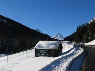Wildpark Silvretta