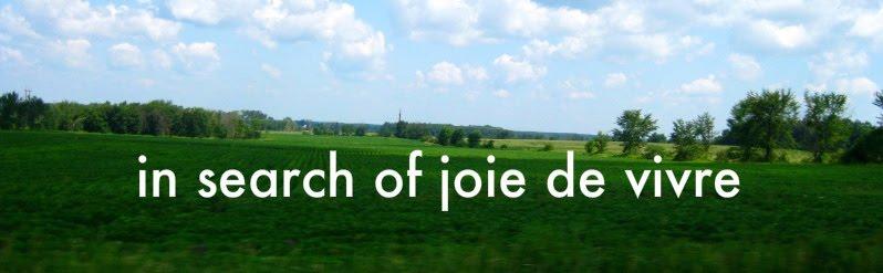 in search of joie de vivre