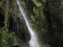 Waterfall - Mount Jerai