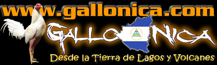 GALLONICA